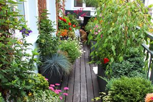 giardino-verticale-2