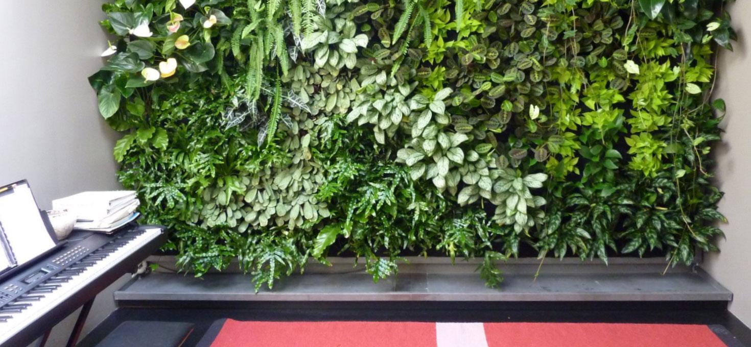 Un giardino in verticale