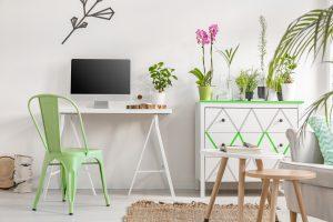 Le piante in appartamento producono ossigeno e ci trasmettono pace e benessere.