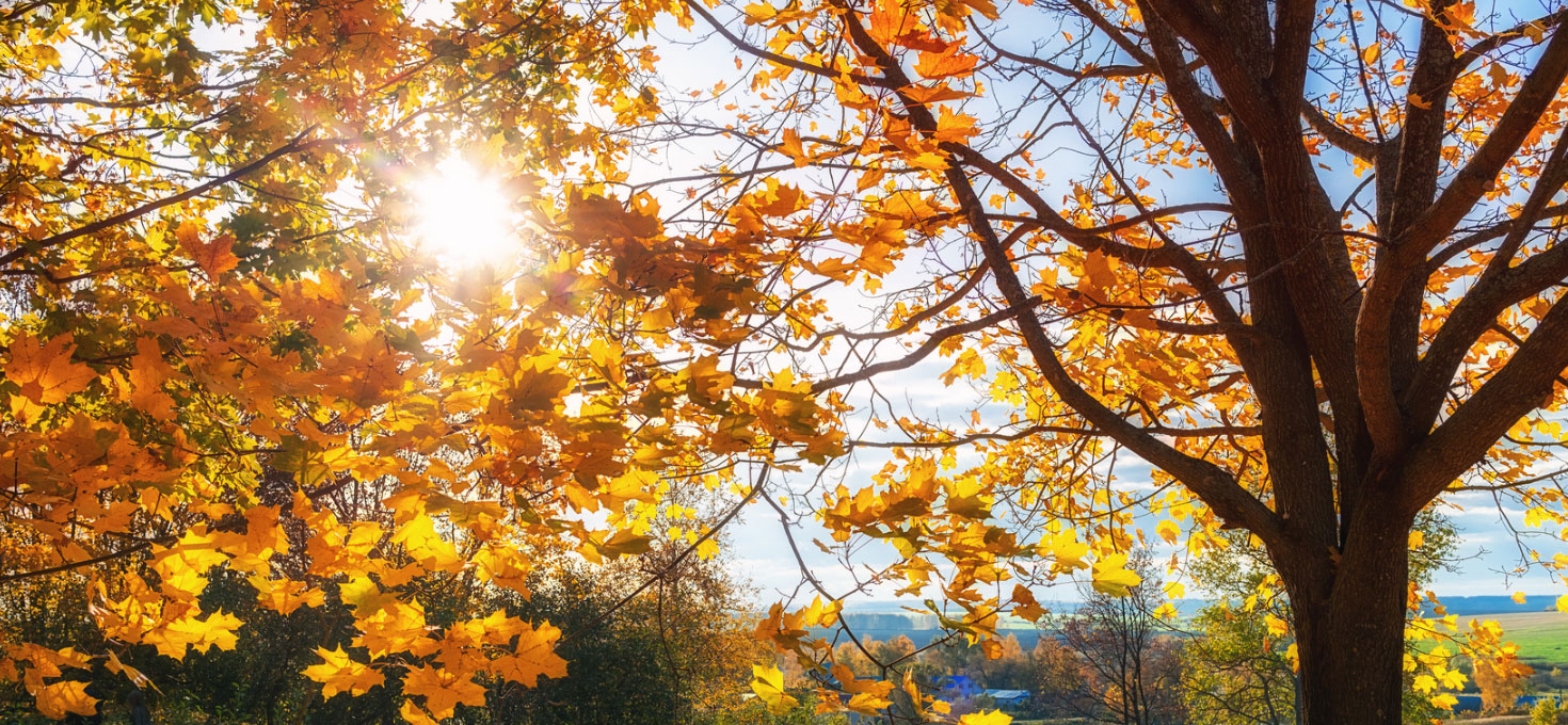 Un autunno molto caldo