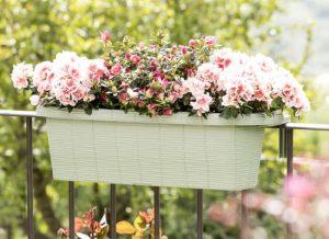 fioriera per balcone e staccionate